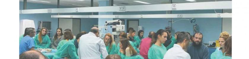 curso neuroanatomia 23 26 octubre 2019